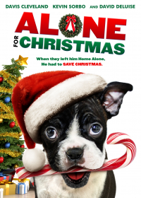 Alone for Christmas (2013)